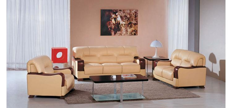 2109 Modern Leather Sofa
