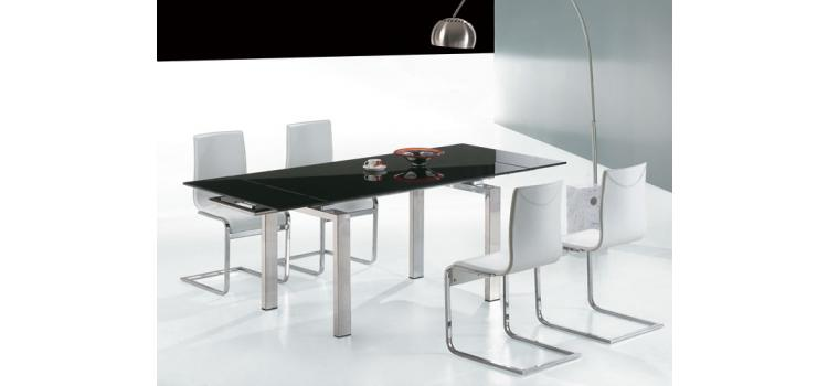 Pacific Modern Dining Table