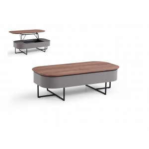 Modrest Reid Modern Walnut & Grey Coffee Table