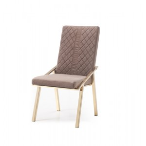 Modrest Acton Modern Brown Velvet & Gold Dining Chair (Set of 2)
