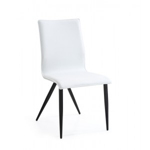 Xyla - Modern White & Black Dining Chair (Set of 2)